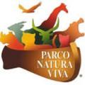 parco-natura-viva-zoo-safari